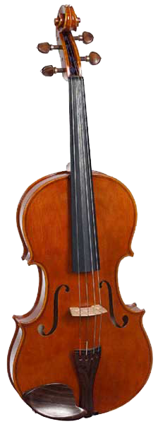 Photograph of a viola